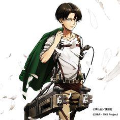 Levi (Rivaille) Ackerman   Shingeki no Kyojin #SnK