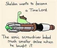 Sheldon turtle - Bing Images