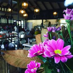 Stuck for gift ideas for mum? Pop in and see our great range of plants and giftware. Gift vouchers also available which can be used on anything from plants to lunch and coffee @vanloonsnursery #vanloonscafe #mothersday #gifts #spoilher #bellarinepeninsula #breakfast #lunch #coffee by vanloonscafe http://ift.tt/1JO3Y6G