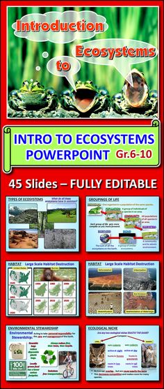 This EDITABLE POWERPOINT contains 45 SLIDES and 11 HYPERLINKED VIDEOS on the Introduction to Ecosystems. It contains the foundation concepts to launch students into ecology as well as dives into some key environmental issues.  Topics: biotic, abiotic, terrestrial, aquatic, natural and artificial ecosystems, habitat, habitat destruction, biodiversity, groupings of life (individual, population, community, ecosystem, biome, biosphere etc.) sustainability etc.