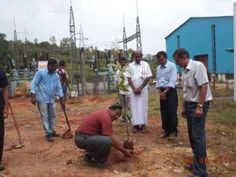 Soham tree plantation initiative marking World Environment Day.