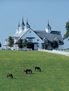 Horse barn in Kentucky. Dear millions of dollars, you can show up any day now thanks.