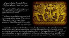 Carl Jung Depth Psychology: Carl Jung: The eyes of the sphinx opened.