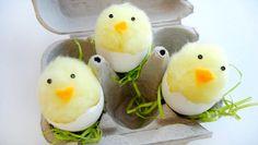 Fun for the kids : Eggshell cartoon of chicks #craft