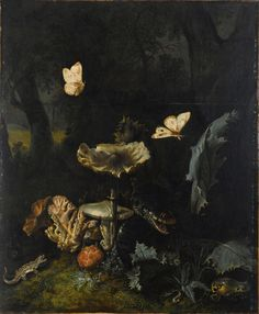 "lunasabatica:  "" Otto Marseus van Schrieck: A Forest Floor Still Life with various Fungi, Thistles, an Aspic Viper, a Sand Lizard, a Snail, a Tree Frog and two Moths, circa 1660.  """
