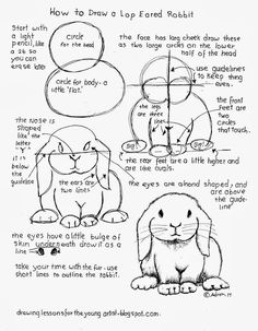 How to Draw Worksheets for The Young Artist: How To Draw A Lop Eared Rabbit Free. - How to Draw Worksheets for The Young Artist: How To Draw A Lop Eared Rabbit Free Worksheet - Basic Drawing, Drawing Lessons, Drawing Techniques, Drawing Tips, Art Lessons, Painting & Drawing, Rabbit Drawing, Easy Bunny Drawing, Bunny Art