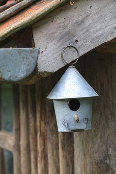 Un abri pour les oiseaux