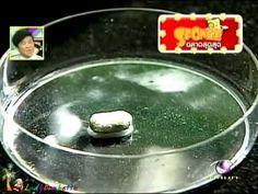 Sponge ฉลาดสุดสุด - กินยา หรือยาพิษ - YouTube