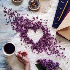 Flowers spring photography lavender 58 Ideas for 2019 I Love Coffee, Coffee Break, Morning Coffee, Coffee Heart, Coffee Girl, Flat Lay Photography, Coffee Photography, Spring Photography, Photography Flowers