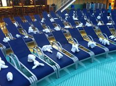 Towel animals took over the Lido deck on Carnival Breeze on the morning we pulled into Rome. Carnival Ships, Carnival Breeze, Towel Animals, Cruise Destinations, Cruise Tips, Romantic Getaway, Travel Couple, Rome, Destination Wedding