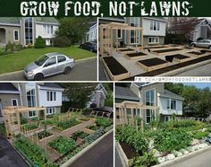 The 'Grow Food Not Lawns' Initiative - Cupcakepedia