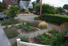 A well-zoned front yard with edible vegetables mixed in with beneficial herbs and ornamental grasses.