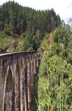 9 Arch Bridge in situated in the green hill town of Ella in Sri Lanka. How to get to 9 Arch Bridge, 9 Arch Bridge price and best time to visit 9 Arch Bridge Arch Bridge, Sri Lanka