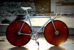 Bike Porn V2.0 - Page 189 - Bike Forums