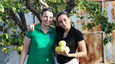 Heghineh Family Vlog #64 - Հարևանները - Heghineh Cooking Show in Armenian