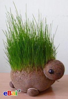 Hlava s rostoucí trávou