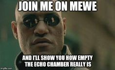Join me on MeWe and I'll show you how empty the echo chamber really is. Funny Memes, Hilarious, Jokes, Spongebob, Working From Home Meme, Nosy People, Snappy Comebacks, Meme Center, Family Guy