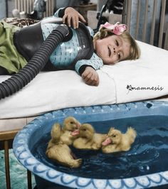 Ducklings used as therapy animals 1956
