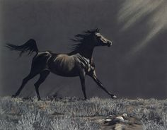 Liberty by Spiritofhorse, via Flickr -- Liberty -- The Equine Art of Kim McElroy http://www.spiritofhorse.com/store/store/archive.asp