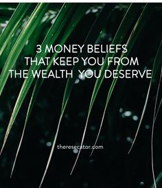 "3 Money Beliefs That Keep You From The Wealth You Deserve ""The money just isn't flowing. I feel like there's a block, but I don't know what it is.""  I could feel my friend's frustration and saw the fire in her eyes as we chatted.  The ""more"" she desired wasn't really about a dollar amount, but the freedom that financial abundance brings. I listened intently as she continued to share what was going on with her financially. When she asked for my advice, I took a deep breath and said, ""I needed…"