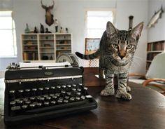 Image: Ernest Hemingway six-toed cats #