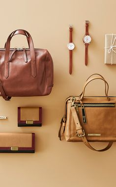 #Fossil Fall Color #colorcurious