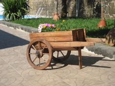 Cardile in…fiore – Benvenuti nel sito ufficiale del borgo di Cardile
