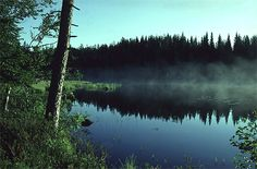The protected area of Elimyssalo presents the nature of Kainuu in its best.