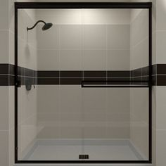 Arizona Shower Door Traditional 51-In To 55-In W X 65.75-In H Frameles