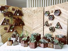 #backdrop #booth #marketbooth #market #succulent #woodwork #woodbackdrop