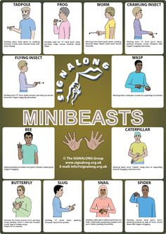 Small Animal and Insect signs - BSL (British Sign Language) Sign Language For Deaf, Australian Sign Language, Sign Language Phrases, Sign Language Alphabet, Sign Language Interpreter, British Sign Language, Speech And Language, Language Dictionary, Learn Bsl