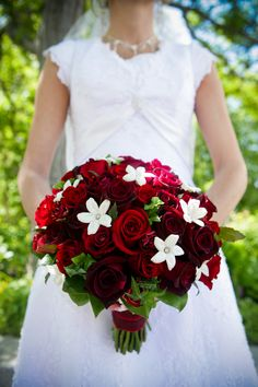 My cousin had a similar bridal bouquet:  blood red roses dotted with contemporary white stephanotis