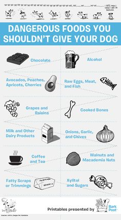 A handy-dandy printable that could live on your refrigerator and serve as a gentle reminder, not just for you but for your house-guests as well!  While some of these foods in small amounts may not be harmful, it's still imperative to keep an eye out and make sure your pups don't get into these foods.