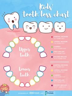 The Most Helpful Kids Tooth Loss Chart Tooth Chart