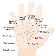 Palmistry the marriage line