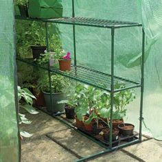 Gardman Walk-In 4 x 6 ft. Greenhouse with Shelving - Greenhouses at Hayneedle