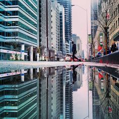 The Parallel Worlds Of Puddles | Bored PandaPuddles of Toronto, Canada