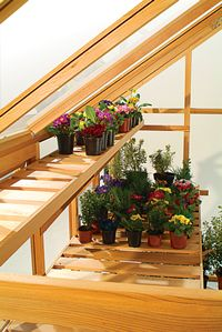 greenhouse shelving - Google Search
