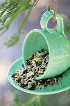 Teetasse inspiriert DIY Projektideen - Bite Sized Biggie Source by Garden Crafts, Garden Projects, Craft Projects, Diy Garden, Herb Garden, Suculentas Diy, Diy Bird Feeder, Teacup Bird Feeders, Garden Bird Feeders