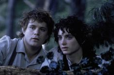 Sam and Frodo - Lord of the Rings