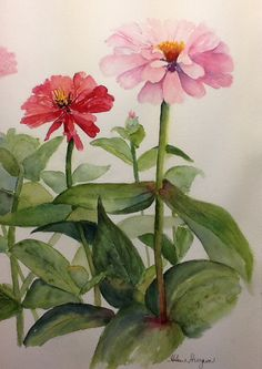 "Watercolor. Original painting ""Pinks"". Summertime and the Zinnias are blooming!"
