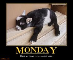 """Dump A Day 20 """"I Hate Monday"""" Funny Pictures"""