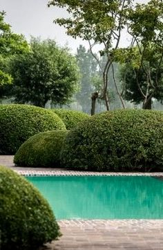 Boxwood clouds around the pool Tropical Landscaping, Landscaping Ideas, Pool Water Features, Pond Fountains, Natural Pond, Sunken Garden, Water Element, Le Havre, Cool Pools