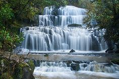 Catlins River Wisp Loop Walk, Purakaunui Falls and Jack's Blowhole, south island bottom