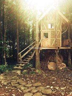 Workaway in United Kingdom. Come and help on Eco/woodland build project and stay in a treehouse in Galloway, Scotland Stay In A Treehouse, Eco Friendly House, Edinburgh, United Kingdom, Woodland, Places To Visit, Hacks, Let It Be, House Styles