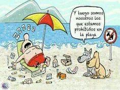 Y luego somos nosotros los que estamos prohibidos en la playa :(
