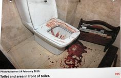 Blood on the toilet seat and on the floor belonged to Reeva, who bled  instantly after being shot by her Boyfriend Oscar, who claim that he thought it was an intruder in the bathroom.