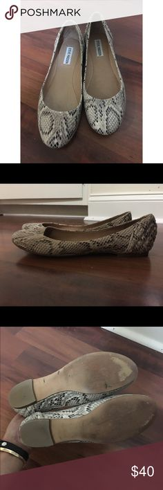 Steve Madden snake skin flats Steve Madden snake skin flats with quilt patch work on the heel. Only worn 3 times. Steve Madden Shoes Flats & Loafers