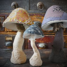 Ann Woods mushroom collection