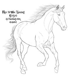 Free-horse-lineart-by-eduscia-on-deviantart-6.png (1024×1159)